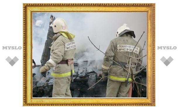 Под Тулой сгорело около 200 кг сена