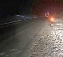 В Алексинском районе насмерть сбили пешехода