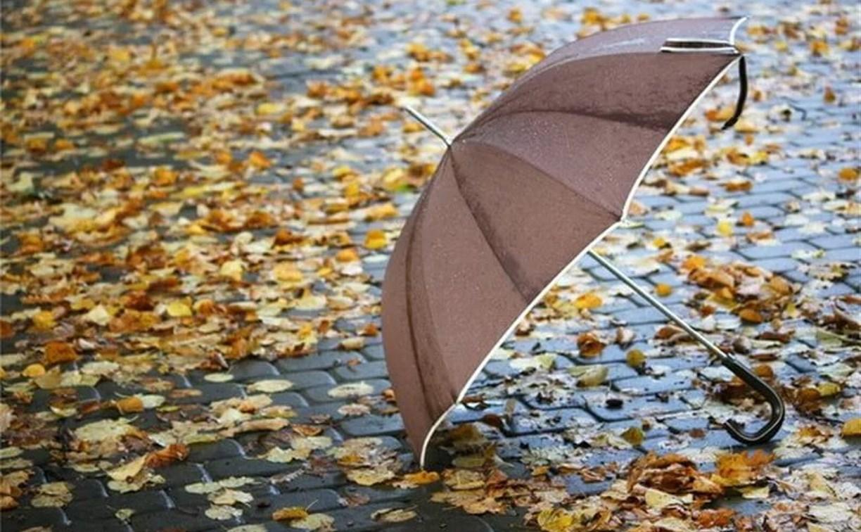 Погода в Туле на выходных: холодно и дождливо