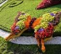 В Туле появятся ёжики, бабочки и зонтики из цветов