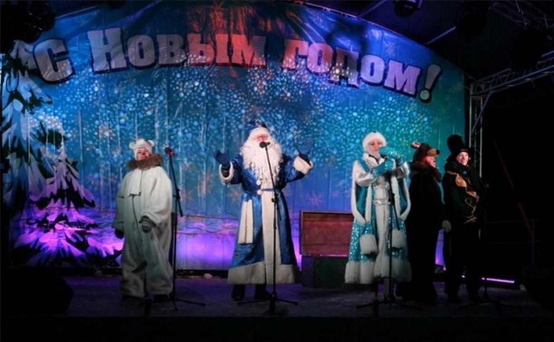 В Тульском кремле открыли новогоднюю ёлку