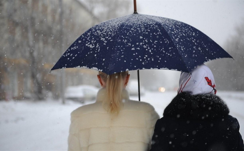 В Туле 17 марта облачно и возможен мокрый снег