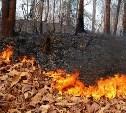 Метеопредупреждние: В Тульской области объявлен пятый класс пожарной опасности