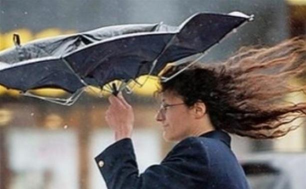 МЧС предупреждает о резком усилении ветра