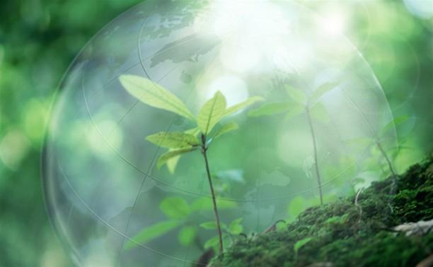 В Заречье открывается музыкально-экологическая выставка