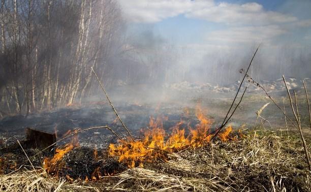 В Тульской области объявлен «желтый» уровень погодной опасности