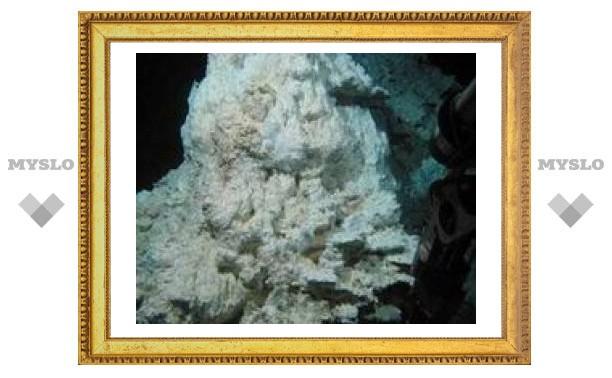 На дне океана нашли источник жизни на Земле