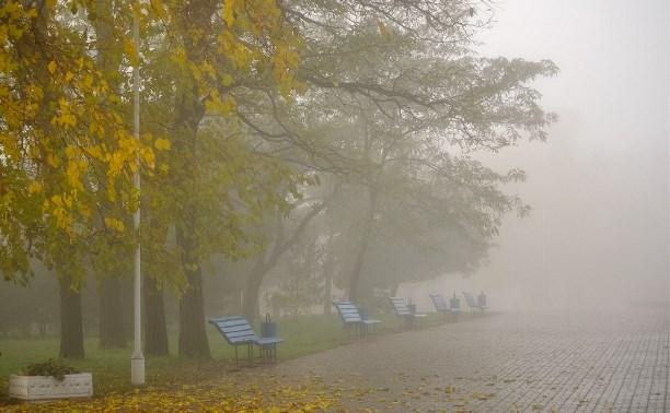 Погода в Туле 8 сентября: облачно, сухо, местами туман