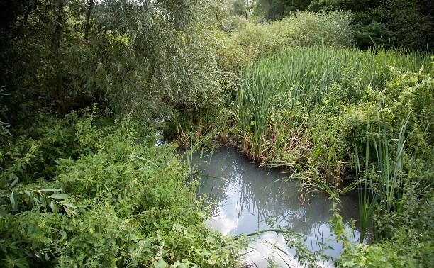 В реку Иншинку несколько лет стекает канализация