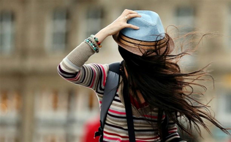 В Туле вновь ожидается усиление ветра