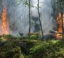 Метеопредупреждение: в Тульской области прогнозируют опасную погоду