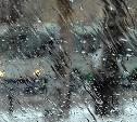 Погода в Туле 27 февраля: снег с дождем и ветер