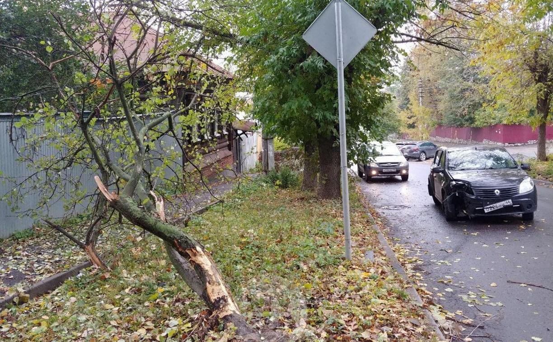 На ул. Тимирязева машина повалила дерево после ДТП с такси