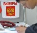 Туляки смогут выбрать участок для голосования на президентских выборах через МФЦ