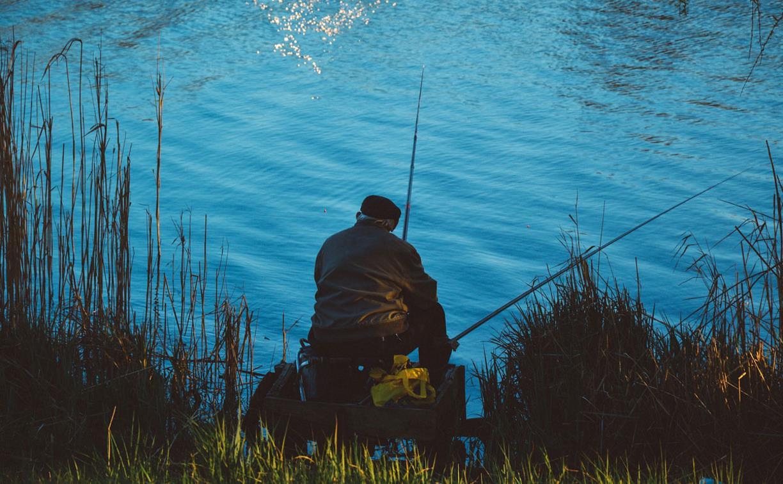 В Новомосковске в пруду утонул пожилой рыбак