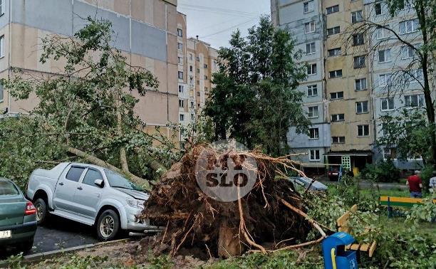 В Тульской области из-за ураганного ветра пострадали 102 автомобиля