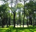 Парк «250-летию ТОЗа» переведут в ведомство «Тульских парков»