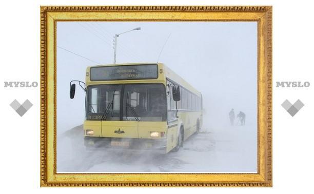 В Туле нет транспортных компаний, которые хотят работать на пригородных маршрутах