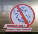 За безбилетный проезд в электричке туляков оштрафуют на 1500 рублей
