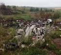 На ликвидацию свалок в Тульской области выделено 209 млн рублей
