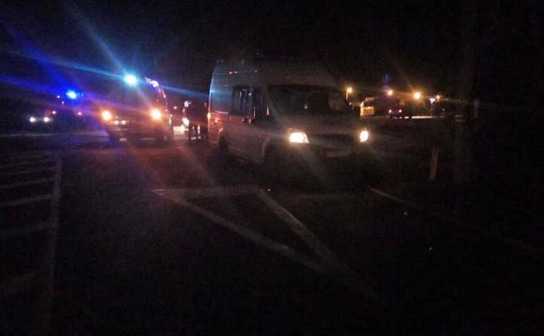 В ДТП с микроавтобусом в Щекинском районе погибли граждане Вьетнама