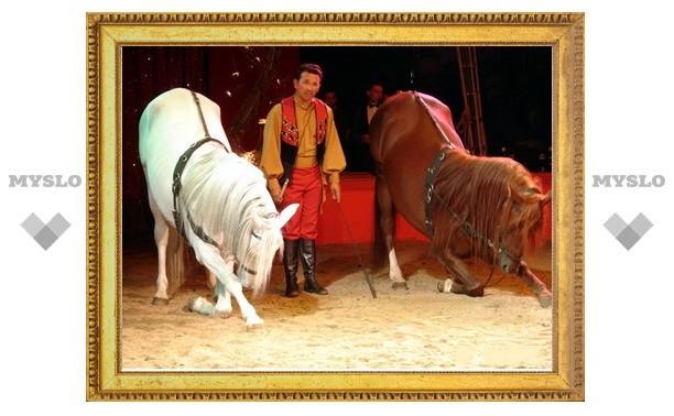В Новомосковске и Узловой покажут новогодний цирк