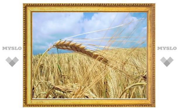 Государственное зерно будут продавать по ценам закупки
