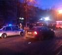 В Криволучье «Шкода» сбила двух пешеходов