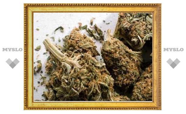У двух алтайских милиционеров изъяли 1,8 килограмма марихуаны
