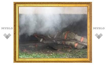 Под Тулой сгорело сразу три дачи