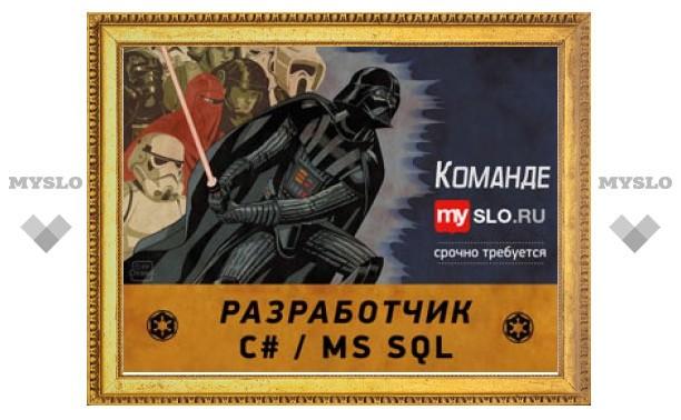 Тульский городской портал MySLO.ru ищет программиста