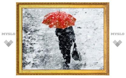 МЧС: На Тульскую область могут обрушиться мокрый снег и сильный ветер