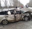 Количество погибших в ДТП под Новомосковском увеличилось до пяти