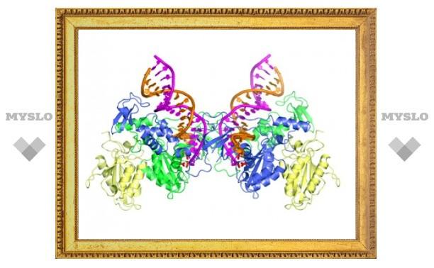 Ученые выяснили структуру ключевого фермента ВИЧ