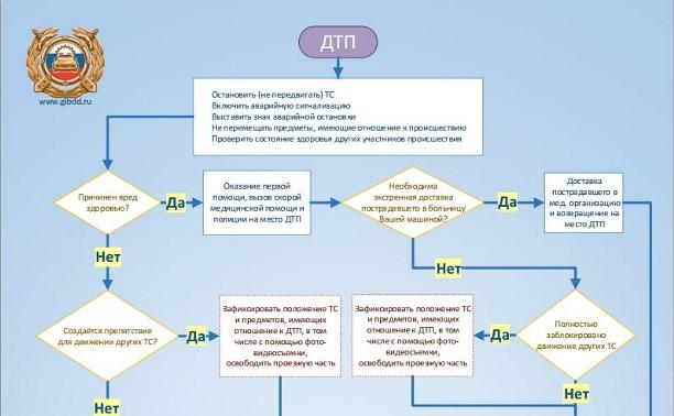 ГИБДД опубликовала алгоритм действий водителя в случае ДТП
