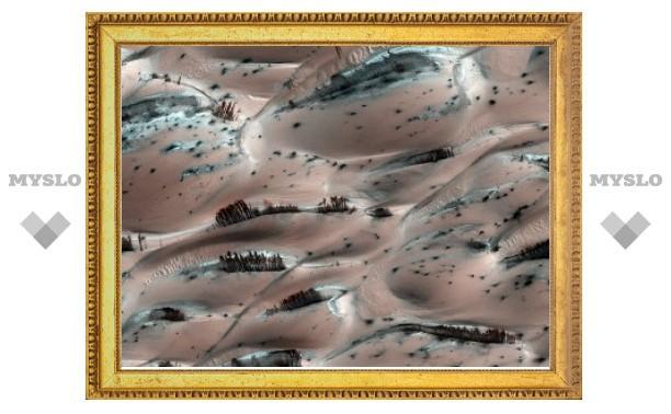 "Зонд NASA сфотографировал на Марсе ""лес"""