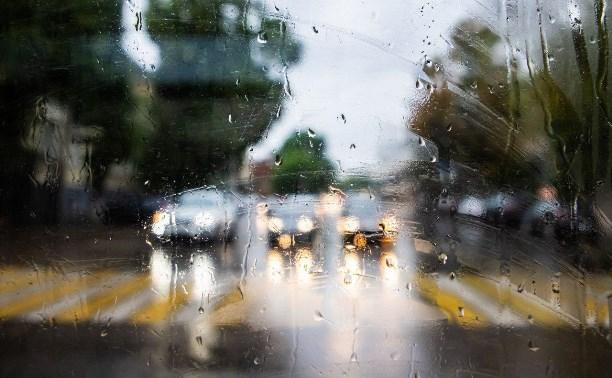 Погода в Туле 9 августа: дождь с грозой и низкое давление