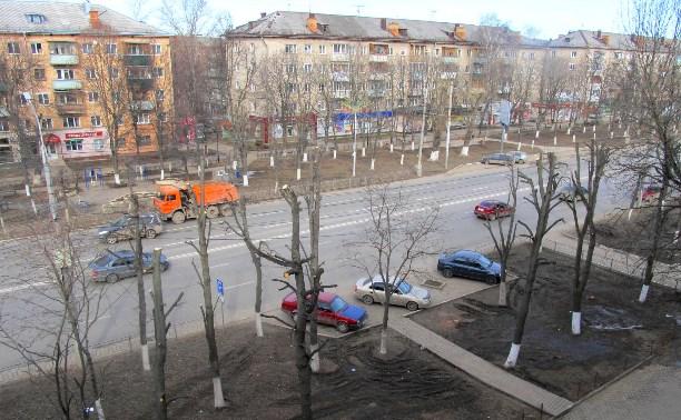 """Туляки снова жалуются на """"варварское"""" кронирование деревьев"""