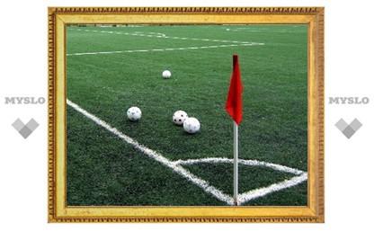 Поля тульской детско-юношеской спортивной школы «Арсенал» преобразятся