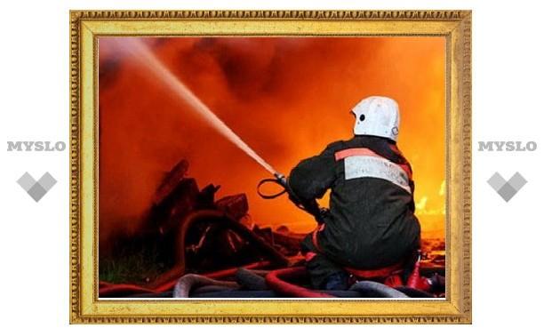 Под Тулой в результате пожара погибли трое человек
