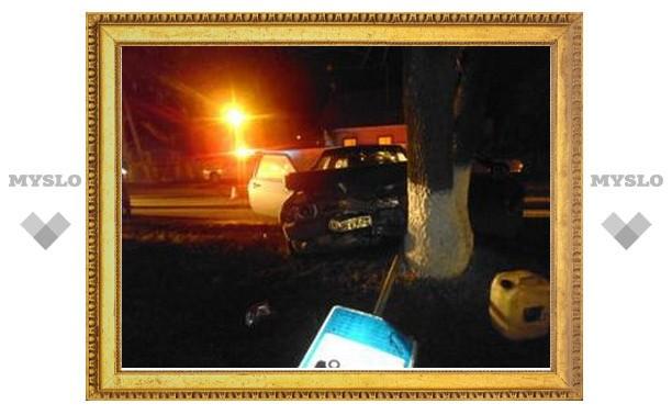 В Туле любитель пьяной езды врезался в дерево