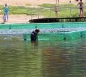 Тульские водолазы готовят акватории к лету