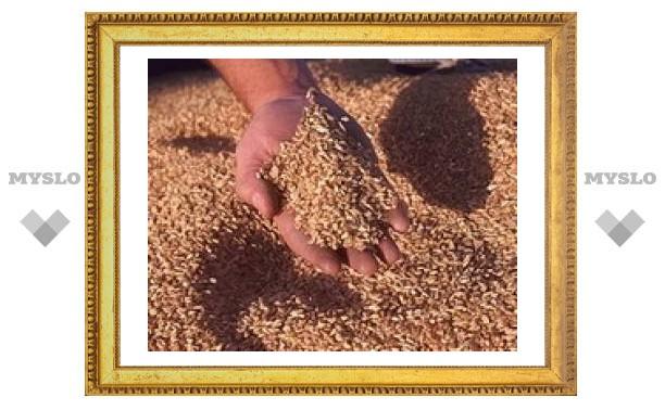 Под Тулой собрали миллион тонн зерна