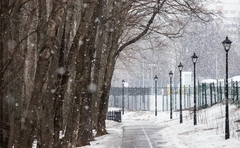 Погода в Туле 16 марта: туман и снег с дождем