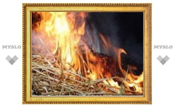 В Туле горит частный дом