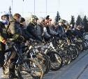 Тульские велосипедисты устроят флешмоб «Велосветлячки»