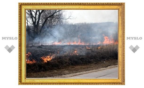 Под Тулой горит сухая трава