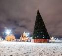 На открытии главной елки города туляков ждет лазерное шоу и фейерверк