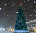 Евгений Авилов приглашает туляков встретить Новый год на главной площади города