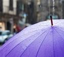 Тульской области прогнозируют продолжение холодного лета